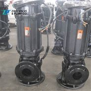 自貢自泵水泵廠無堵塞鑄鐵潛水泵排污泵